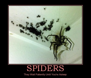 Spiders are the reasons that men buy heavy boots - and often hurl them at the ceiling.